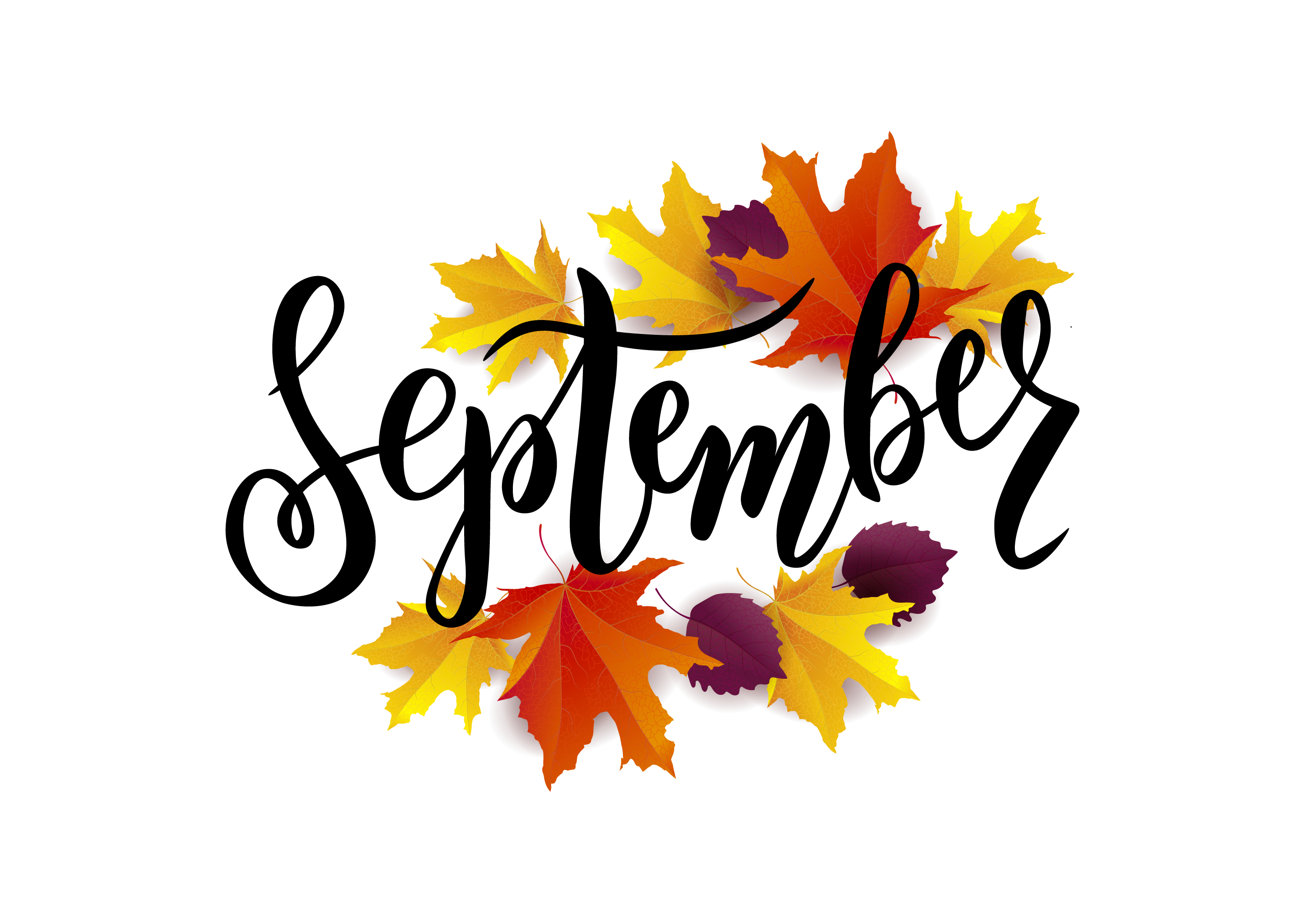 Did You Know September Spells Harvest Time For You?
